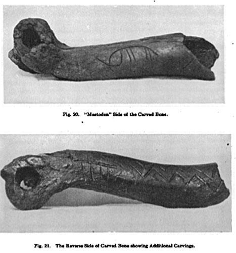 jacobsbonemastodon